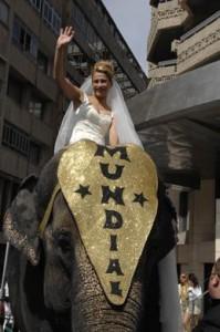Original manera de llegar a tu boda. Sobre un elefante.