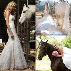 Caballos en tu boda