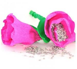 Rosas de Arroz 1